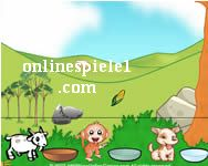Hungry animals gratis spiele
